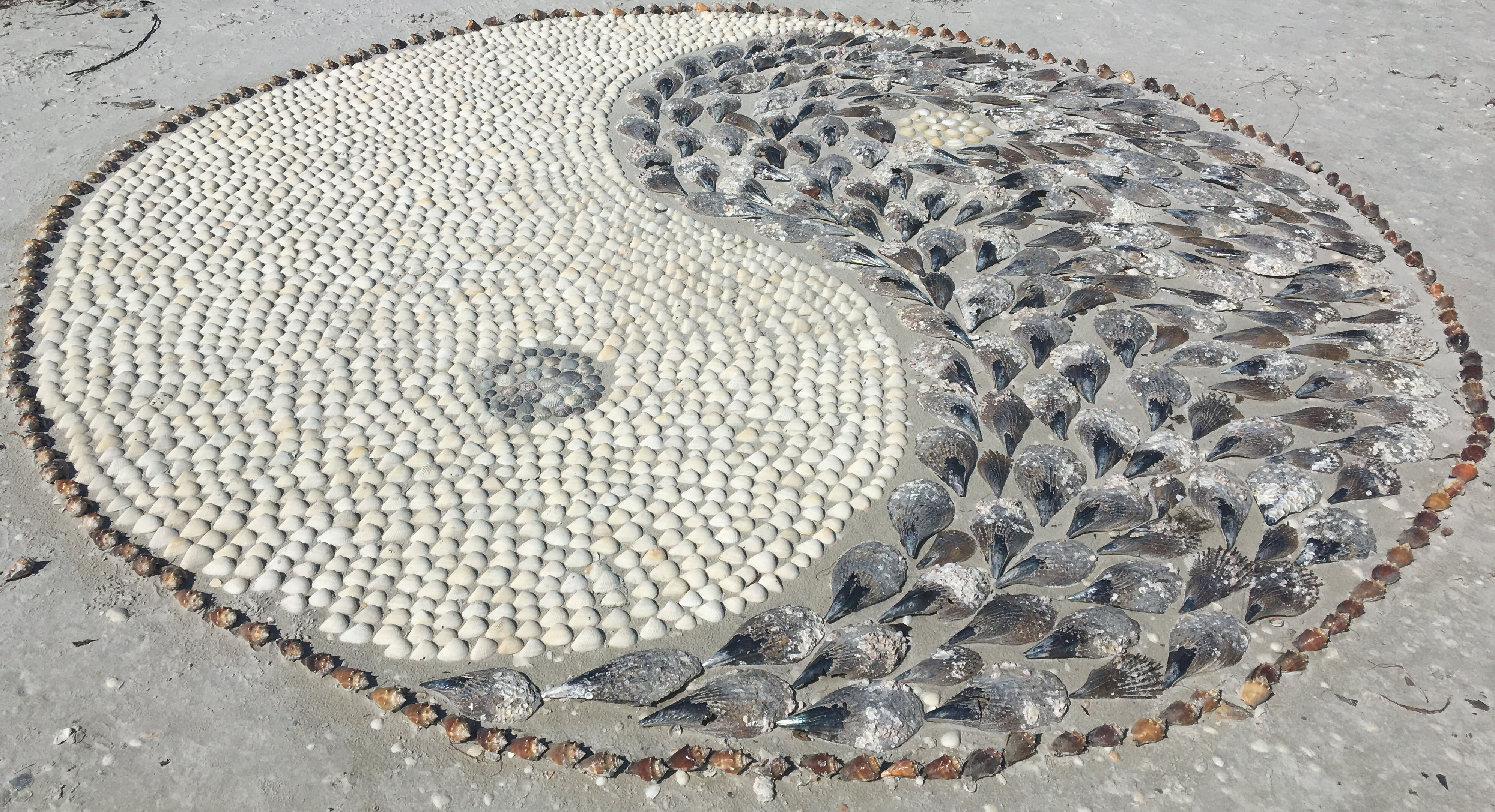 Artistic Seashell Sculptures are possible because of the abundance of shells on Sanibel Island